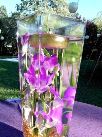 Tall cube vase design \u0026 underwater flower arrangement