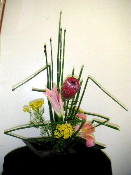 Use Horsetail Plants To Make Geometric Line Of Design California