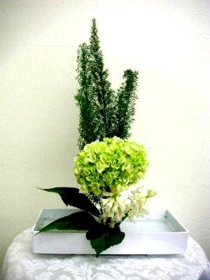 Basic Ikebana Arrangement