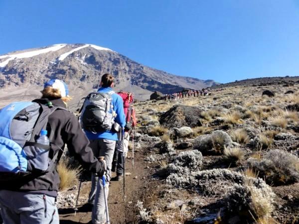 Kilimanjaro Travel Adventure Safaris Ltd