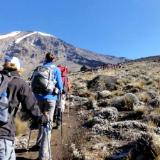 Kilimanjaro Travel Adventure Safaris Ltd